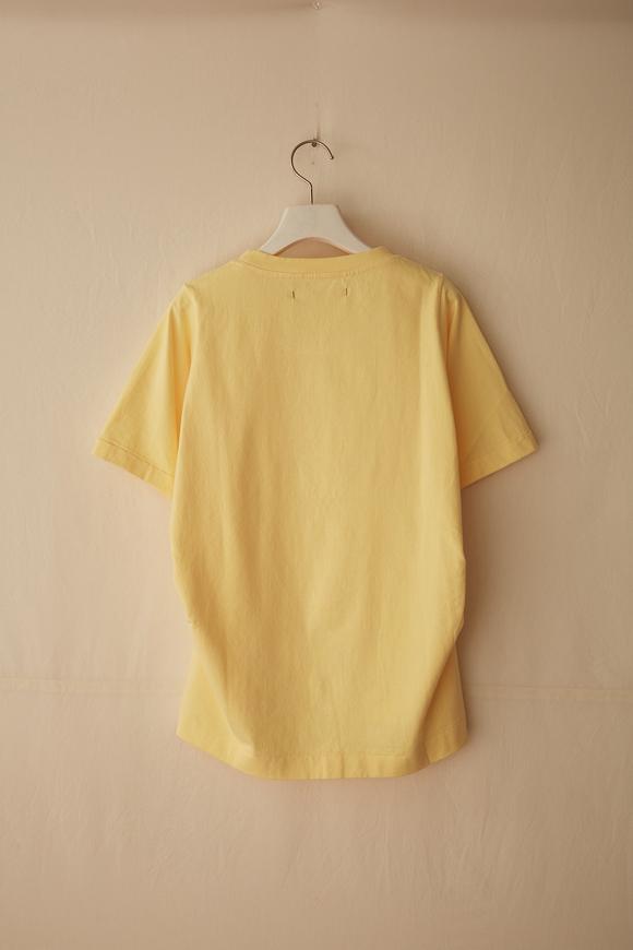 B211-02_canary-yellow